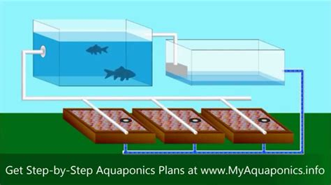 backyard aquaponics system design ultimate backyard aquaponics design how to build an