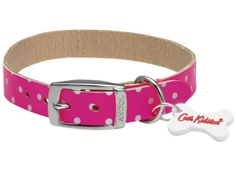 best collars for dogs 10 best collars the independent