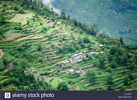 terrace farming in hindi small village and terrace farming in himalaya of