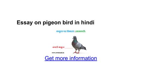 about birds in hindi language essay on pigeon bird in hindi google docs