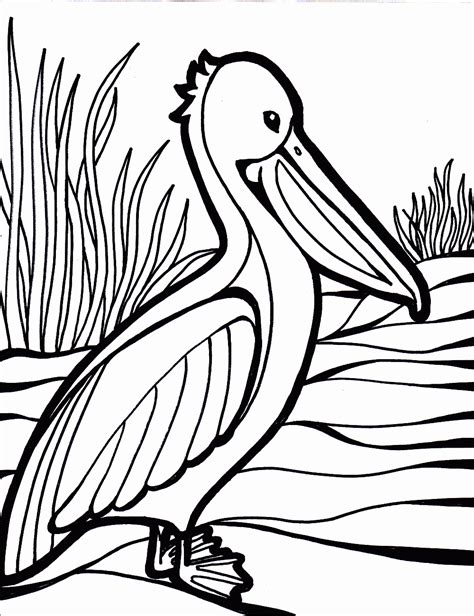 bird coloring page bird coloring pages coloring pages to print