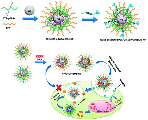 4 Mba Modified Agnps biofunctionalized surface modified silver nanoparticles