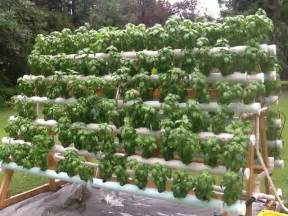 Vertical Hydroponic Garden How To Grow 168 Plants In A 6 X 10 Space With A Diy A