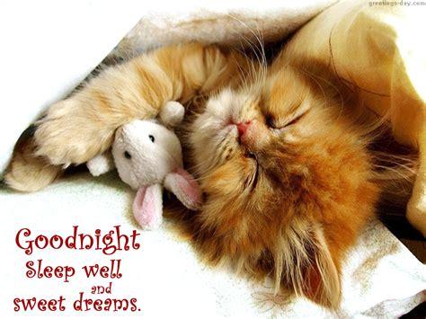 image gallery sleep well