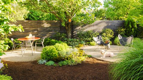 Backyard Ideas For Dogs Sunset Landscaping Ideas For Backyard With Dogs