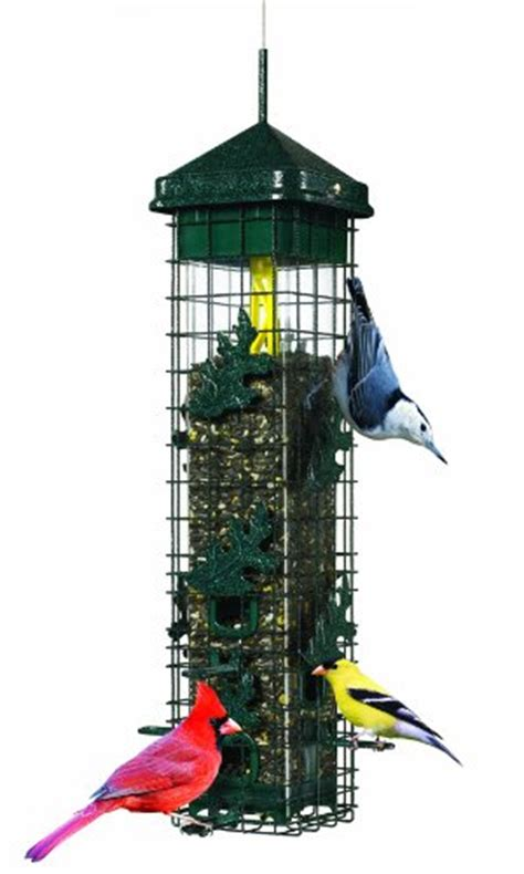 squirrel proof bird feeders buy all your squirrel proof