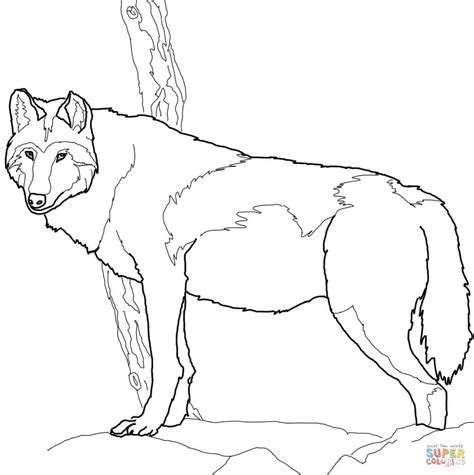 The Boy Who Cried Wolf Coloring Pages Boy Who Cried Wolf Coloring Page Printable