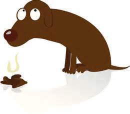 why do dogs us why do dogs eat