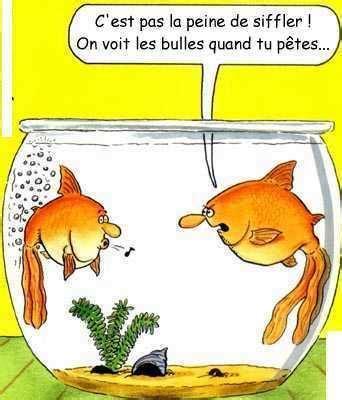 Chuck E Cheese Bathroom Taverne Le Jeu Des Blagues Courtes Ou Longues Page 7