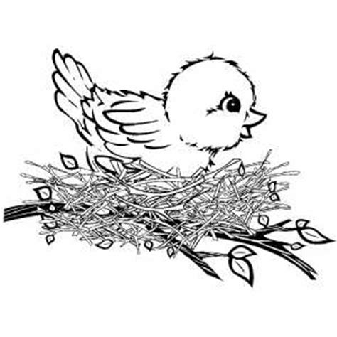free coloring pages of baby birds cute baby birds coloring pages to printables