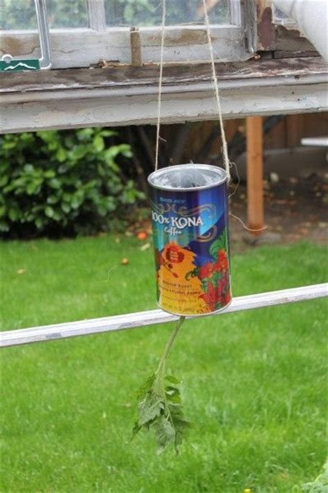 diy hanging tomato planter craftylicious pinterest