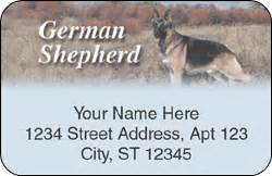 German Address Finder Top Breeds German Shepherd Checks Petchecksdirect