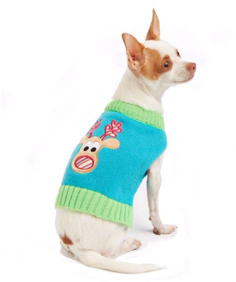 petsmart sweaters where to buy sweaters for pets this season newsday