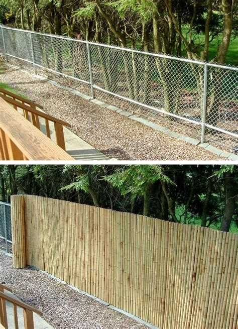 backyard bamboo fencing best 25 bamboo fencing ideas on pinterest