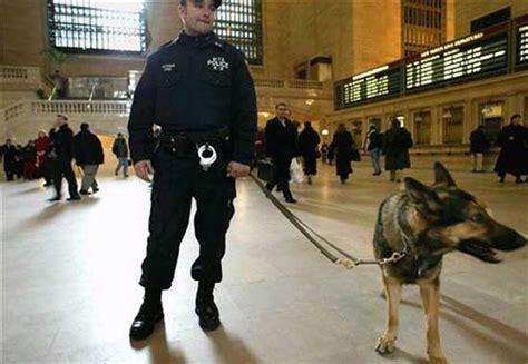 nuevo uniforme de la policia de la ciudad autonoma de nuevo uniforme de la policia de la ciudad