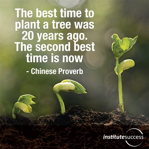 The Best Time To Plant A Tree Was 20 Years Ago The Second When Is The Best Time To Plant A Vegetable Garden