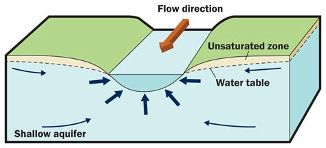 losing diagram how does groundwater interact with the environment