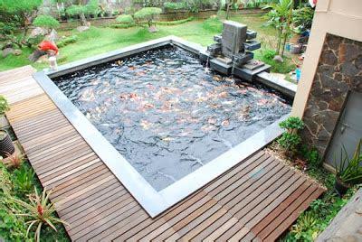 desain gambar ikan gambar desain filter kolam ikan hias