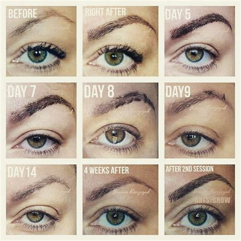eyebrow tattoo scabbing aftercare lyly ink
