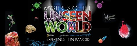 of the unseen world the mystery of meera books lume ar mist 233 rios do mundo invis 237 vel
