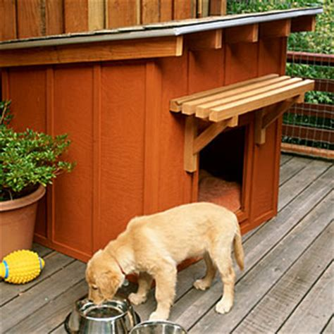 how to build an outdoor dog house how to build a dog house sunset