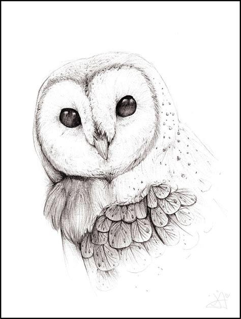 Barn Owl By The F0x On Deviantart Barn Owl Drawing