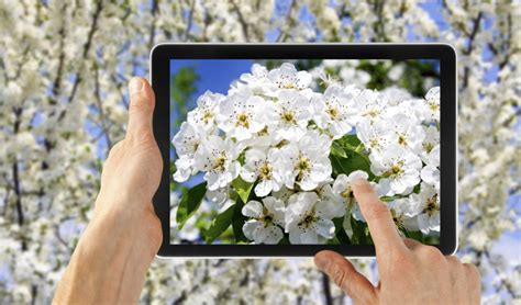 Technology Giveaways - spring technology giveaway