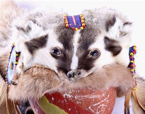 native american badger headdress  headdress