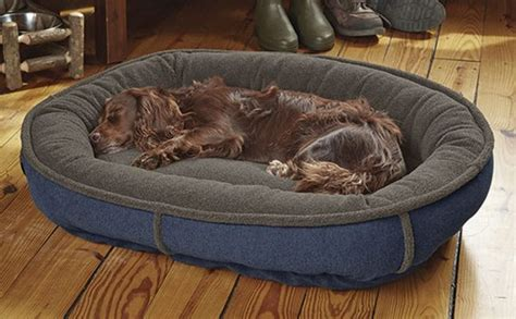 silver dog bed and biscuit gifts we love for dogs finding silver pennies