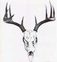 Whitetail deer skull drawings whitetail deer drawings
