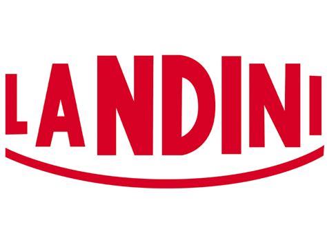 landini camini landini s p a scheda dell azienda landini s p a il