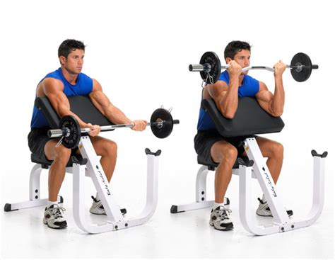 preacher curls without bench the 23 best biceps exercises early to rise