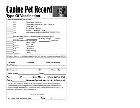 dog vaccination record template puppy record printable