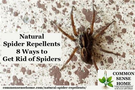 8 Ways To Get Rid Of Salesmen by Spider Repellents 8 Ways To Get Rid Of Spiders