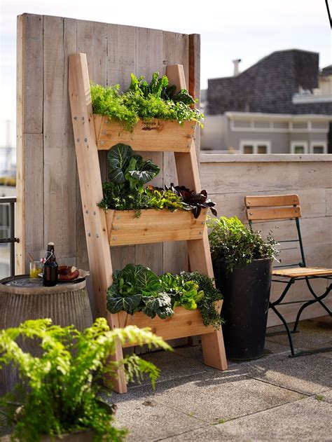 Herb Garden In Planter Boxes by Farmer D 3 Tier Vertical Wall Garden
