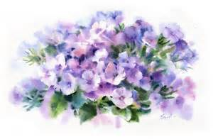 Purple watercolor flowers watercolor flowers