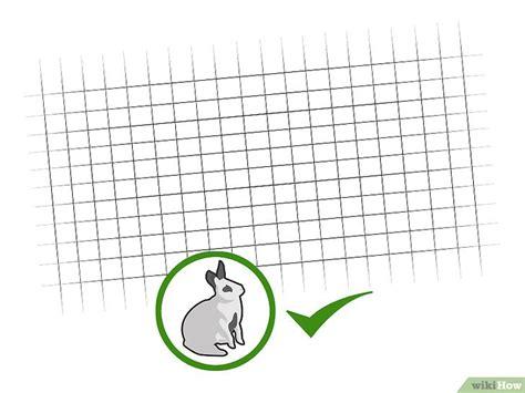 come costruire una gabbia come costruire una gabbia da esterni per conigli