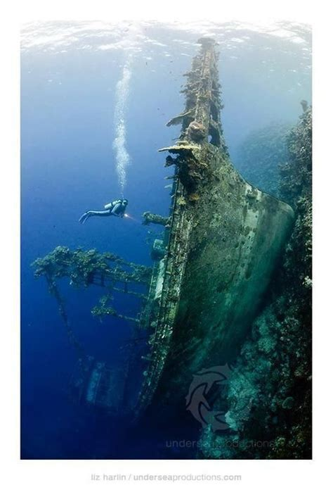 deep sea fishing boat sank 390 best images about shipwrecks and underwater treasures