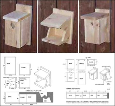 bird house plans for robins robin bird house plans find house plans