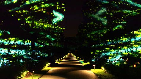 longwood gardens light tickets nightscape a light and sound experience 2016 tickets on
