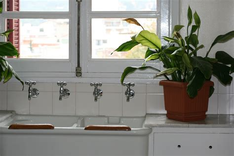 north window plants make a happy home for plants espoma