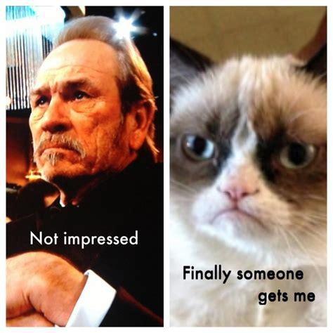 Tommy Lee Jones Meme - 1000 images about meme stuff on pinterest memes pop