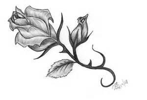 rose tattoo by nexquick on deviantart