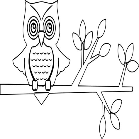 coloring book website owl coloring picture eliolera supercoloring website