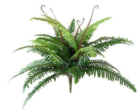 pianta per interni piante finte da interno piante finte piante