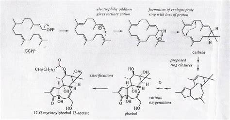Obat Urdafalk kus farmasi mekanisme mevalonat dan deoksiselulosa phospat