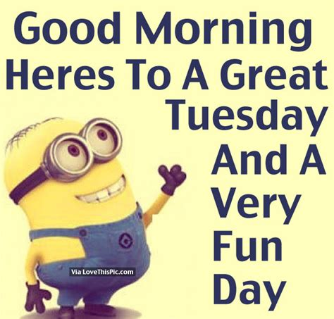 a great tuesday images morning heres to a great tuesday and a