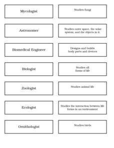 Types Of Scientists Worksheet types of scientists 6th 8th grade worksheet lesson planet