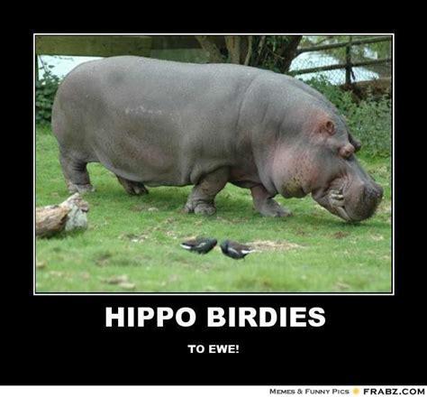 Hippo Memes - naruto the hippo memes