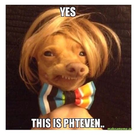 Ugly Dog Meme - phteven pictures trusper